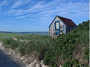 Blue Cottage Cape Cod Print by Samuel H Close