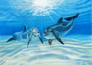 Marine Life Pastels Prints - Blue Crush Print by Michaeline McDonald