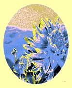 Blue Oval Framed Prints - Blue Dahlia Watercolor Framed Print by Will Borden