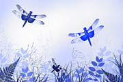 Blue Dragon Fly Posters - Blue Dragonfly Art Poster by Christina Rollo