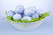 Eggs Photos - Blue Easter eggs in bowl by Elena Elisseeva