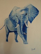 Justin Lee Williams - Blue Elephant