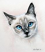 Kitty Drawings Posters - Blue Eyes Poster by Lena Auxier