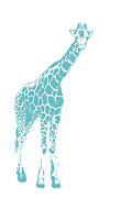 Beauty Balance Design - Blue Giraffe