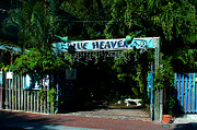 Restaurant Sign Prints - Blue Heaven in Key West - 3 Print by Susanne Van Hulst
