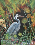 Blue Heron Drawings Prints - Blue Heron Print by Brenda Everett