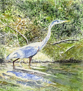 Blackstone Valley Prints - Blue Heron Print by Carol Flagg