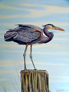 Migratory Bird Painting Framed Prints - Blue Heron Lookout Framed Print by Phyllis Beiser