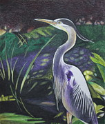 Blue Heron Drawings Prints - Blue Heron Print by Terri Thompson