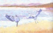 Diana Haronis - Blue Herons At Sunrise