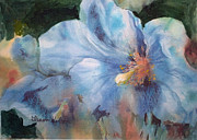 Blurred Paintings - Blue Hibiscus by Sharon K Wilson