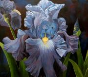 Alfred Ng Metal Prints - Blue Iris Metal Print by Alfred Ng
