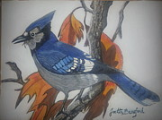 Joetta Beauford - Blue Jay at Fall