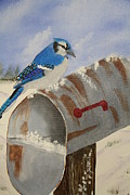 Bluejay Painting Metal Prints - Blue Jay in winter Metal Print by Victor Alderson