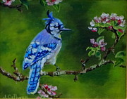Pink Flower Branch Paintings - Blue Jay by Jennifer Calhoun