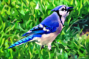 Bluejay Digital Art Posters - Blue Jay Poster by Stephen Younts