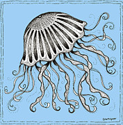 Shells Drawings Prints - Blue Jellyfish Print by Stephanie Troxell