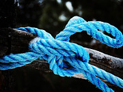 Zinvolle Art - Blue Knot