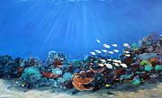 Ken Ahlering - Blue Lagoon