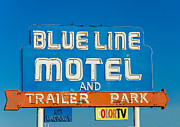 Trailer Park Posters - Blue Line Motel and Trailer Park Poster by Matthew Bamberg