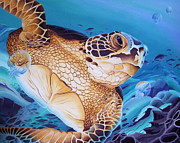 William Love - Blue Loggerhead
