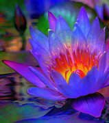 Blue Digital Art Originals - Blue Lotus by Byron Fli Walker