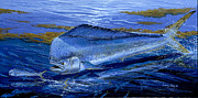 Mahi Mahi Painting Posters - Blue Mahi Off0071 Poster by Carey Chen