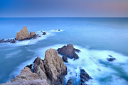 Almeria Prints - Blue mermail reef Print by Guido Montanes Castillo