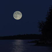 Bc Coast Photos - Blue Moon by Randy Hall