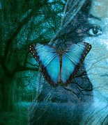Maureen Digital Art - Blue Morpho by Maureen Tillman