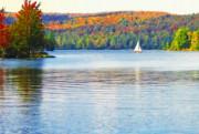 Steve Ohlsen - Blue Mountain Lake 1