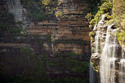 Tim Hester - Blue Mountains Waterfall
