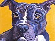 Staffie Paintings - Blue Nose Pitbull by Ana Marusich-Zanor