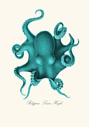 Patruschka Hetterschij - Blue Octopus