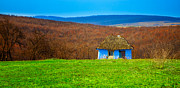 Romania Posters - Blue old cottage Poster by Gabriela Insuratelu
