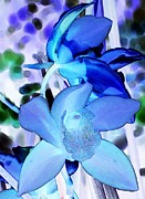 Bloosom Prints - Blue Orchids Print by Kathleen Struckle