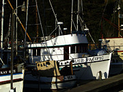 Moorings Prints - Blue Pacific Print by Bill Gallagher