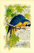 Parrot Art Print Mixed Media - Blue Parrot by Little Vintage Chest