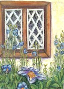 Blue Window Pastels - Blue Poppies of Luss by Laurie Morgan