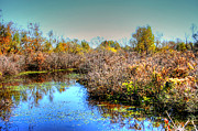 Autumn Photographs Photos - Blue Reflection by Ester  Rogers