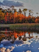 Fall Colors Autumn Colors Posters - Blue Reflections Poster by Rob Wilson