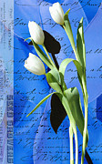 Love Letter Mixed Media Prints - Blue Ribbon Tulips Print by Anahi DeCanio
