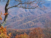 Katie Beougher - Blue Ridge Autumn