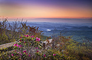 Blue Ridge Mountains Posters - Blue Ridge Dawn Poster by Andrew Soundarajan