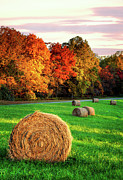Hay Framed Prints Framed Prints - Blue Ridge - Fall Colors Autumn Colorful Trees and Hay Bales I Framed Print by Dan Carmichael