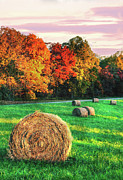 Hay Framed Prints Framed Prints - Blue Ridge - Fall Colors Autumn Colorful Trees and Hay Bales II Framed Print by Dan Carmichael