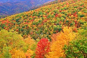 Michael Weeks - Blue Ridge Fall near...