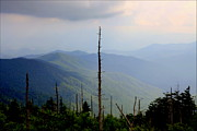 Scenic Overlooks Prints - Blue Ridge Mountains Print by Karen Wiles