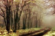 Dan Carmichael - Blue Ridge Mountains -...