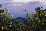 Jonathan Welch - Blue Ridge Parkway 3